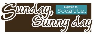 Sunday, Sunny day