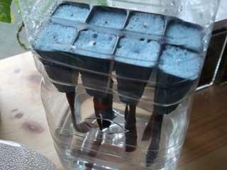 給水ヒモ付き。